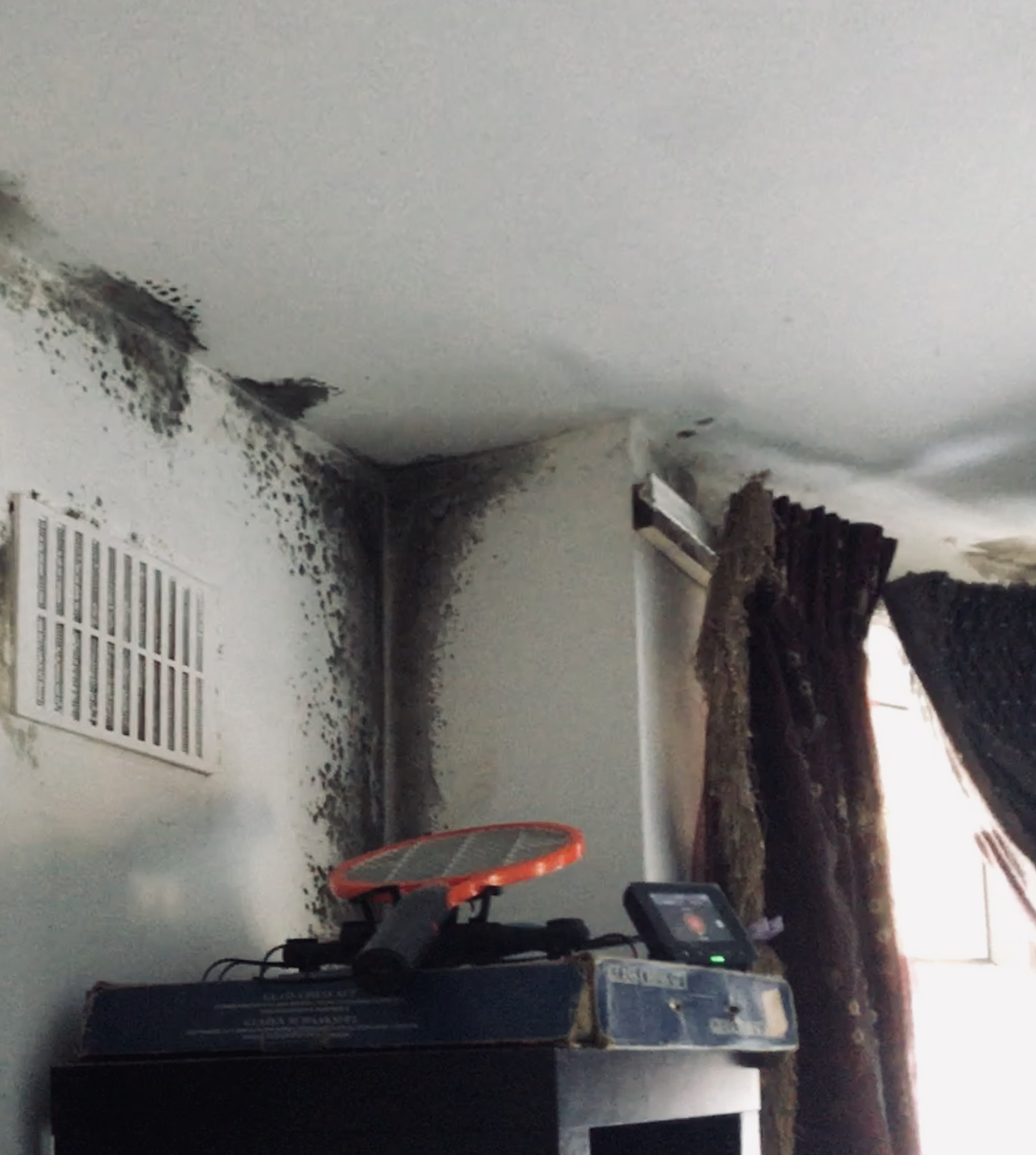 mould on wall